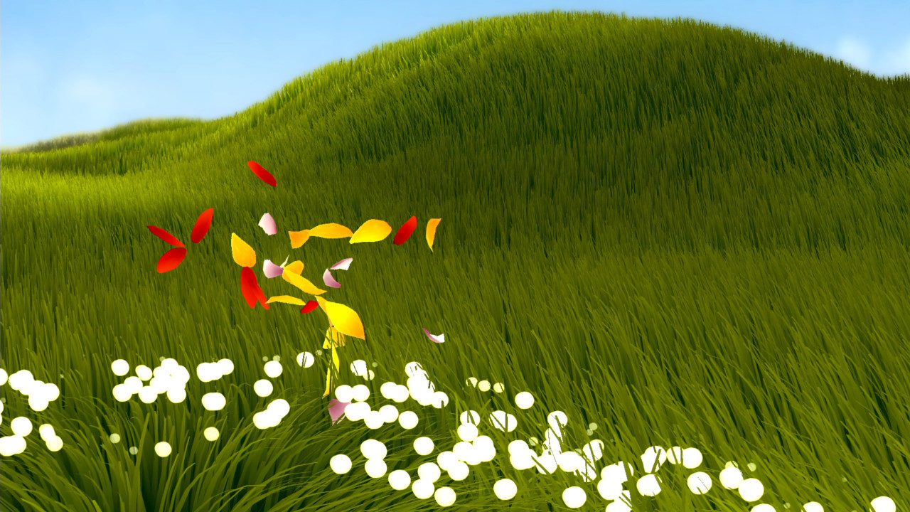A grassy field with flower petals